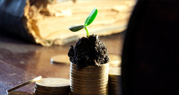 黄金树战青峰:建立标准化黄金回购与存金网络,实现业务闭环 | 爱分析访谈
